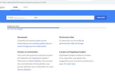 Page Speed Insights pour analyser la vitesse de chargement d'une page web